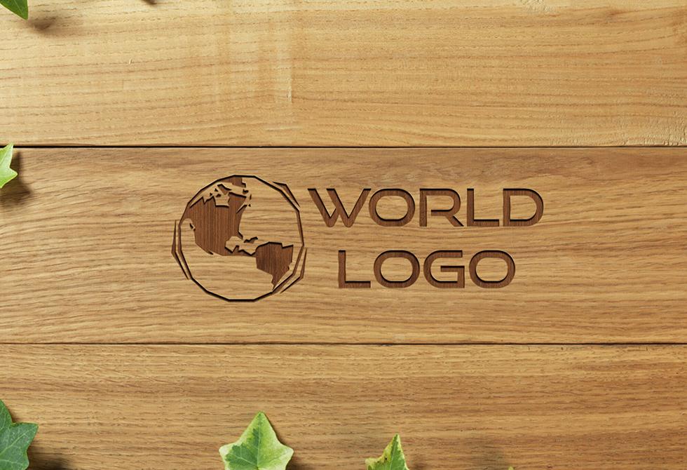 logo_mockup_1
